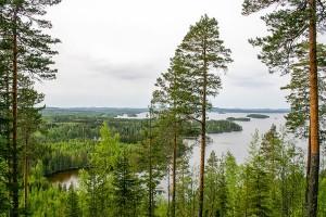 Uhrikivi, Hornanmäki, Leppävirta
