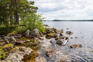 Iso-Pannusaaren tafoni, Sorsavesi, Leppävirta