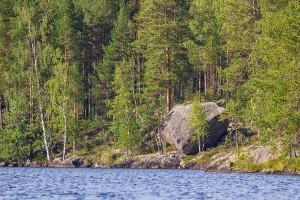 Iso-Hakosen siirtolohkare, Sorsavesi, Leppävirta
