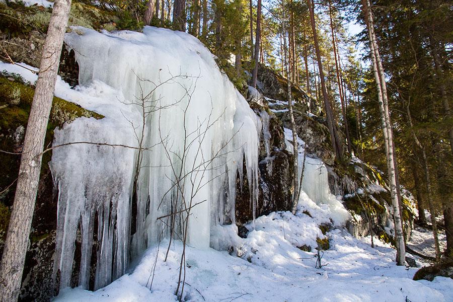 Vaajavuoren jääpuikkoja