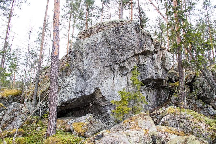 Iso kiven murikka