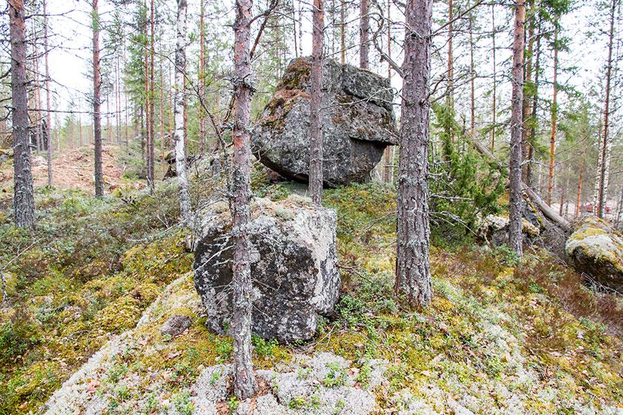 Kivimäensalon ukko
