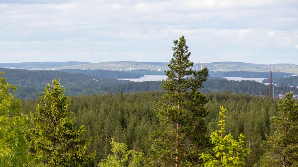 Näkymä Jyväskylän suuntaan