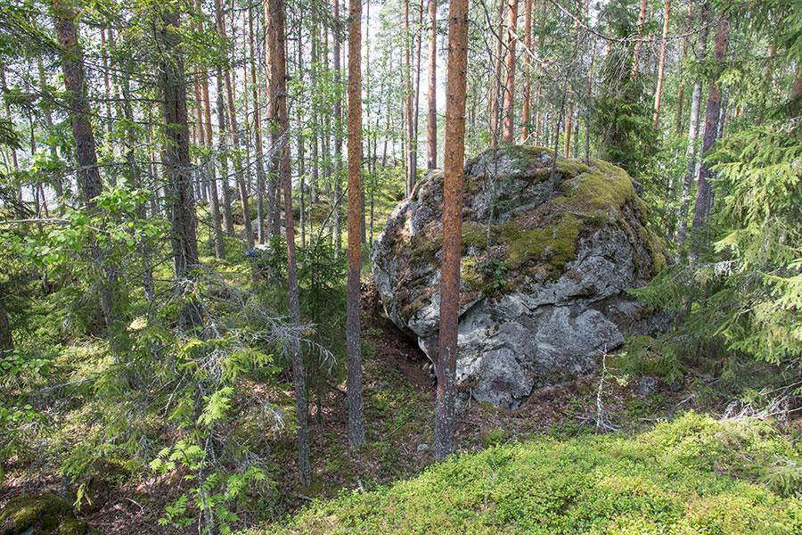Kiviniemen kären luolakivi