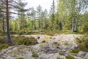 Heikinmäen pirun tarinat, Orinoro, Leppävirta