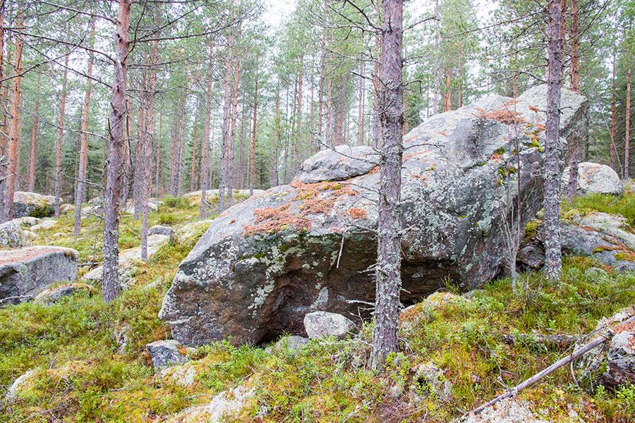 Lehmänpäävuori, Rautalampi