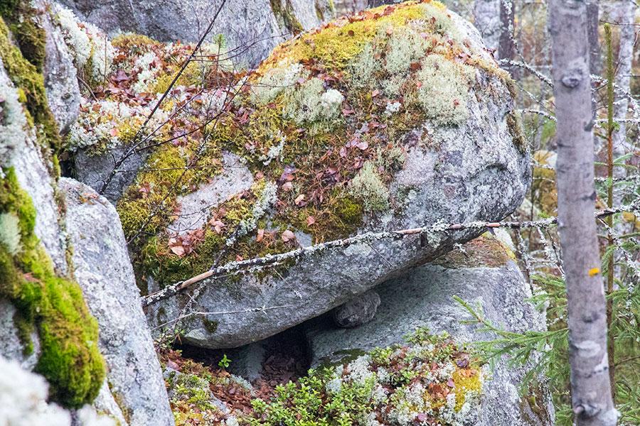 Vuorentausvuori, Leppävirta