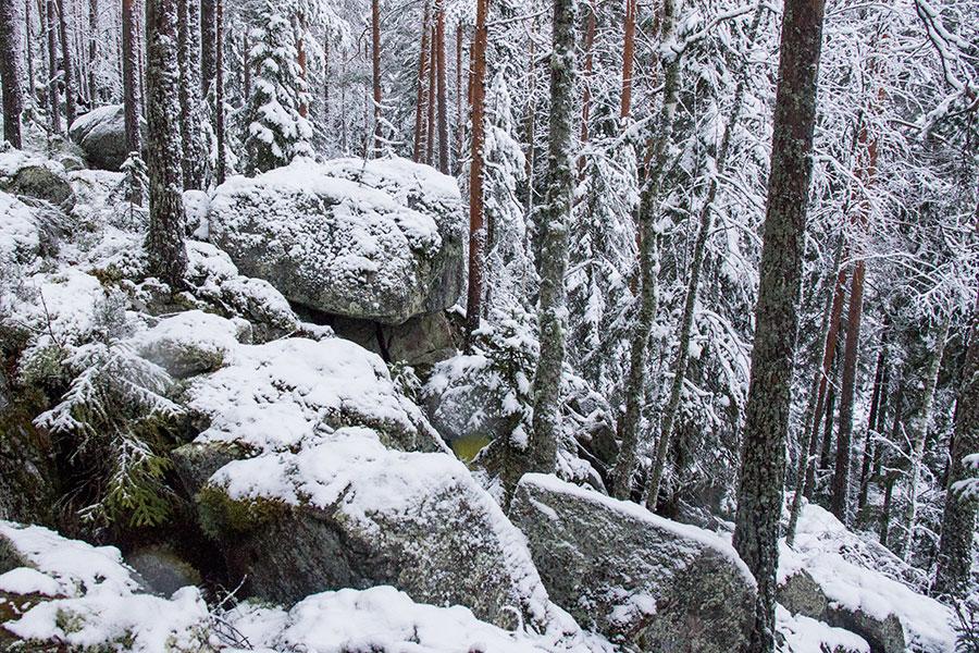 Paljakkavuori, Leppävirta