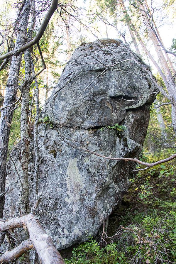Enonniemi, Etelä-Konneveden kansallispuisto