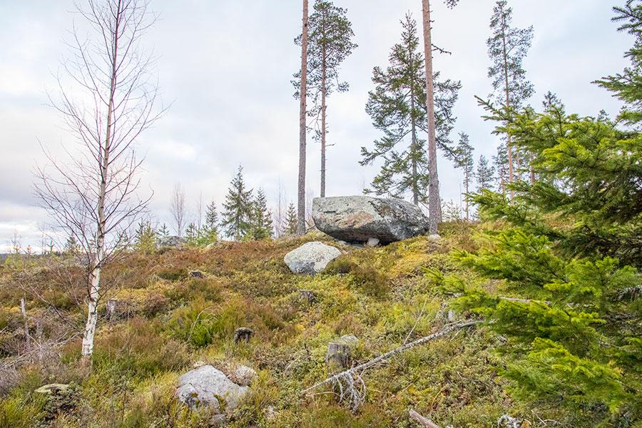 Polvijärven Kivilahenmäki, Heinävesi