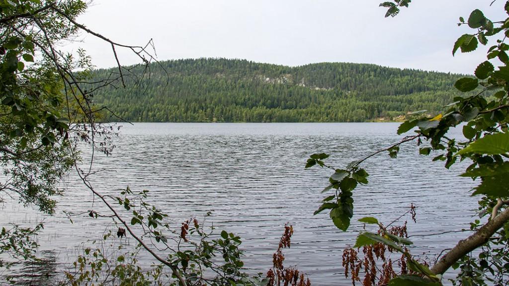 Käränkälampi, Lieksa