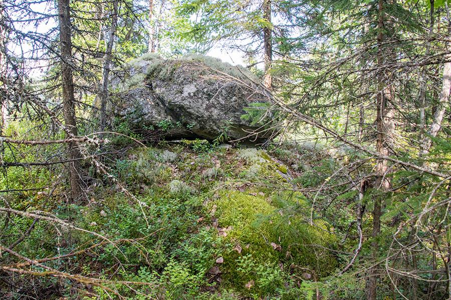 Ryläys, Kontiolahti