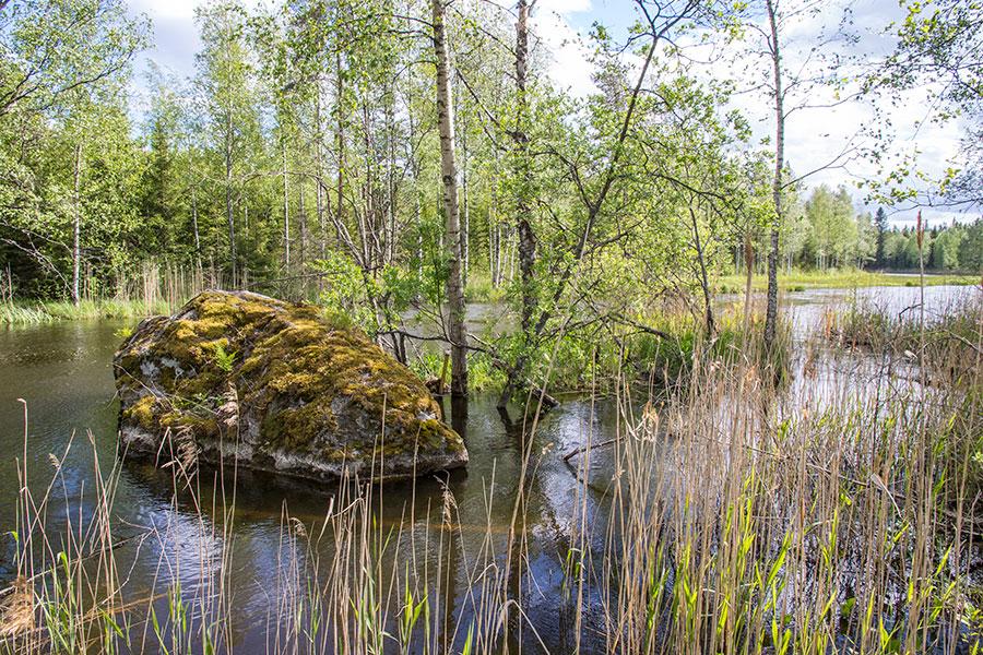 Patakivi, Leppävirta