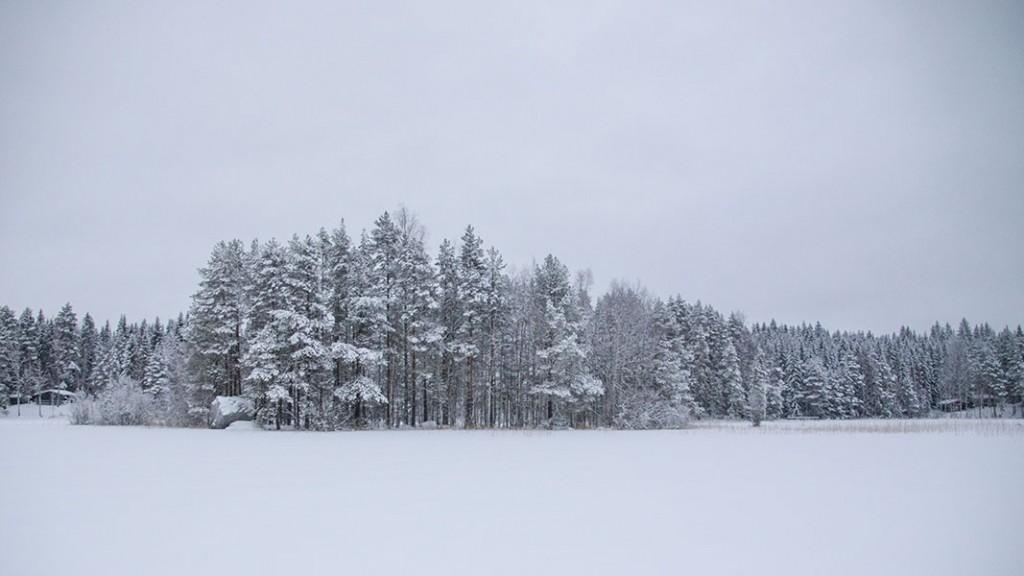Maijoonkivi, Särkilahti, Leppävirta