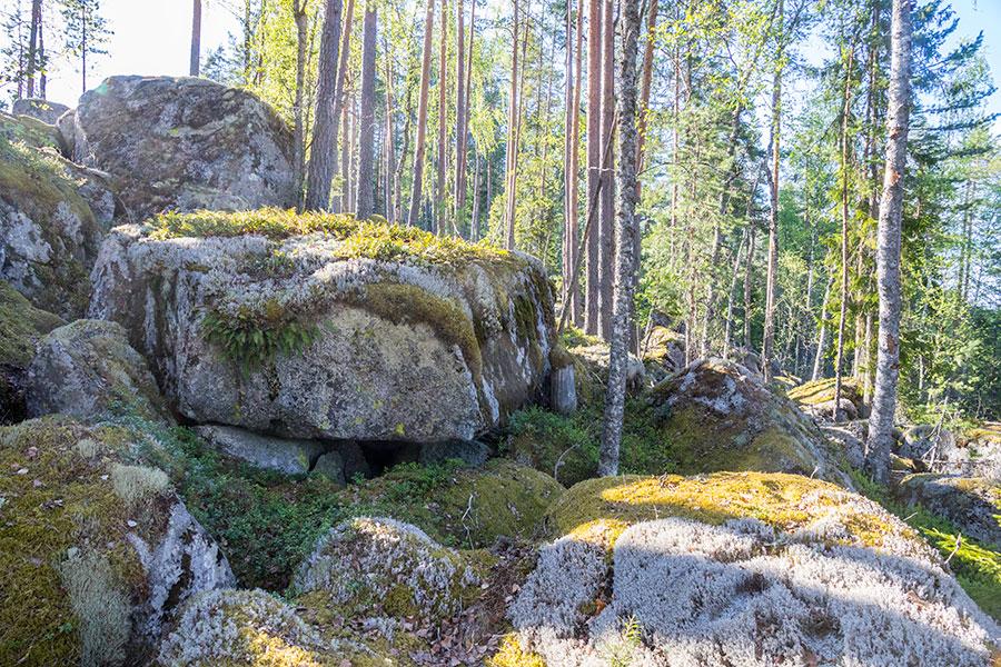 Kurjenvuori, Sorsakoski