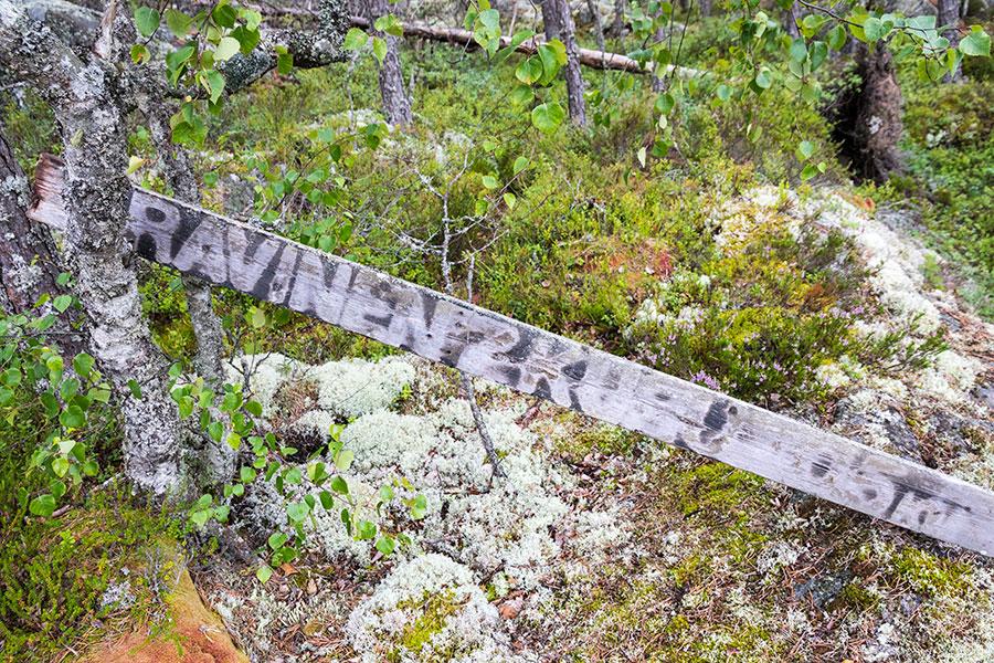 Pyhävuori, Lapväärtti