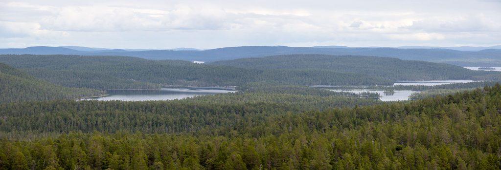 Näkymä Juppuravaaralta itään, Inari