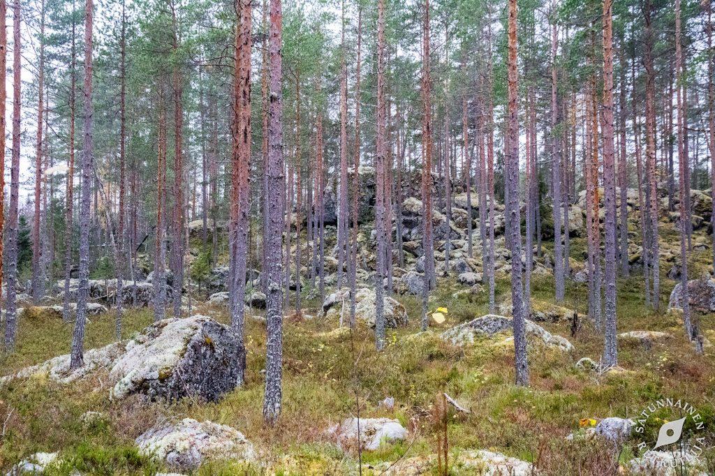 Luola1, Leväniemi, Jäppilä