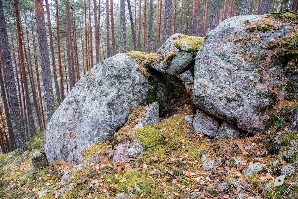 Kivi rakosessa, Leväniemi, Jäppilä