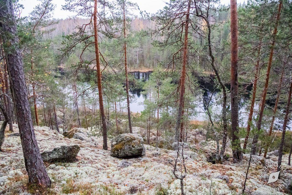 Vuorilampi,Leväniemi, Jäppilä
