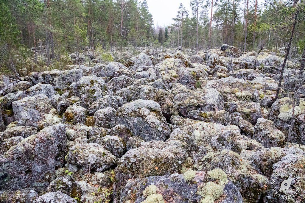 Puronsuun pirunpelto, Leväniemi, Jäppilä