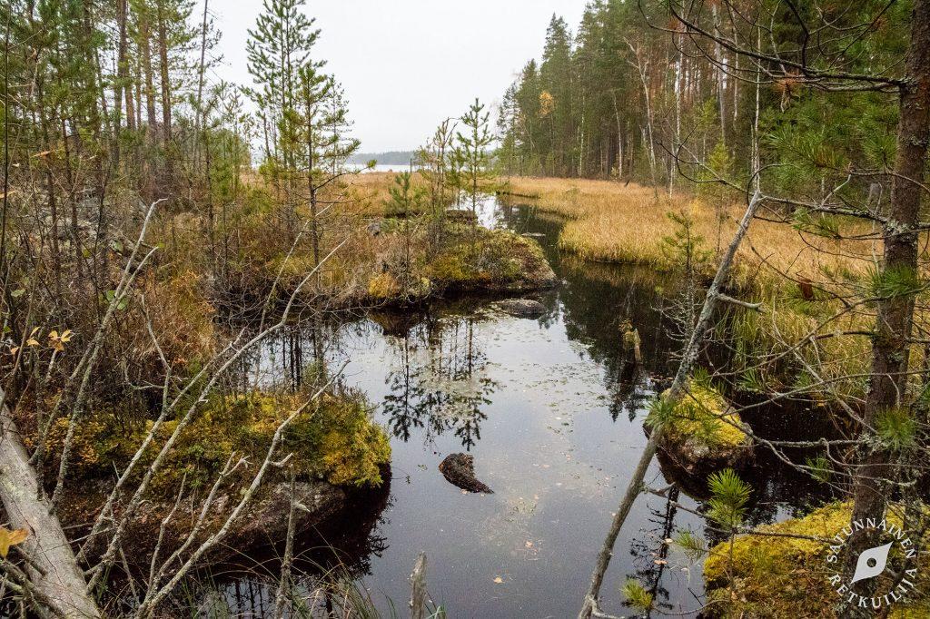 Puronsuu, Leväniemi, Jäppilä