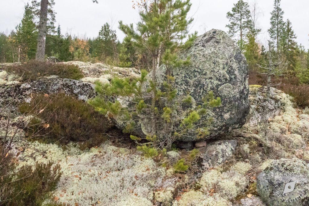 Isonkivenmäki, Kolovesi