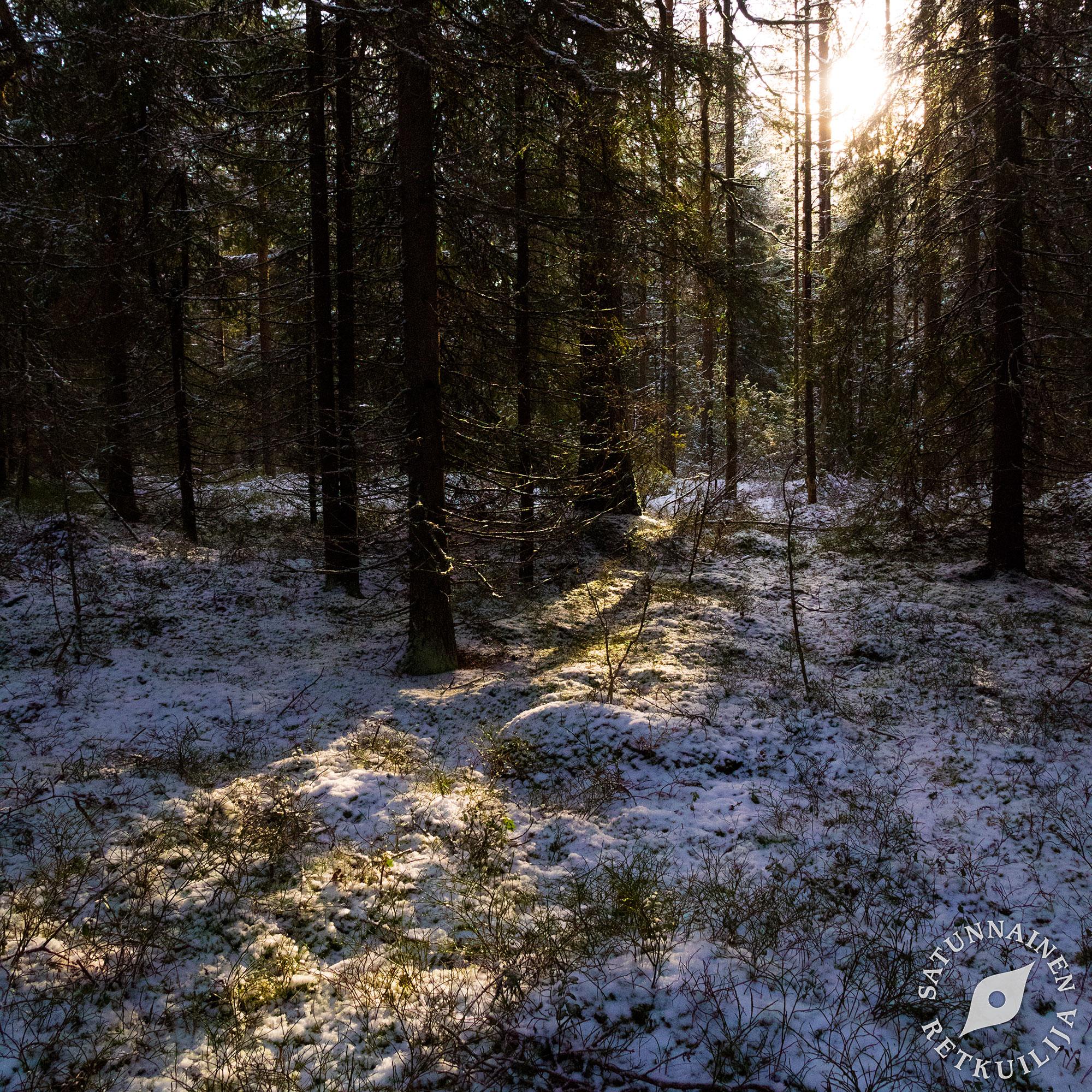 Kuopio luontopolut