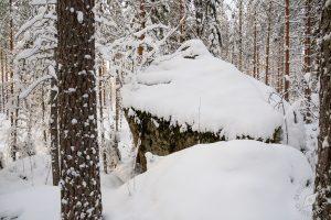 Lumikenkäilyä Leväniemellä, Jäppilä