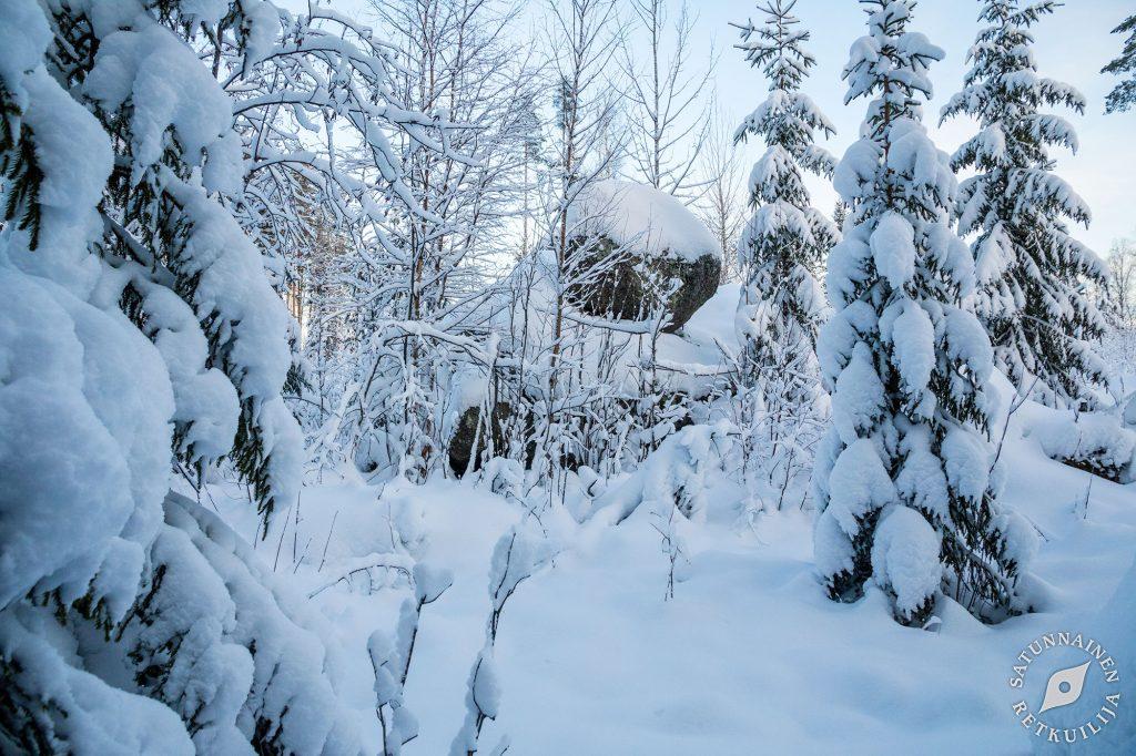 Leväniemi, Jäppilä