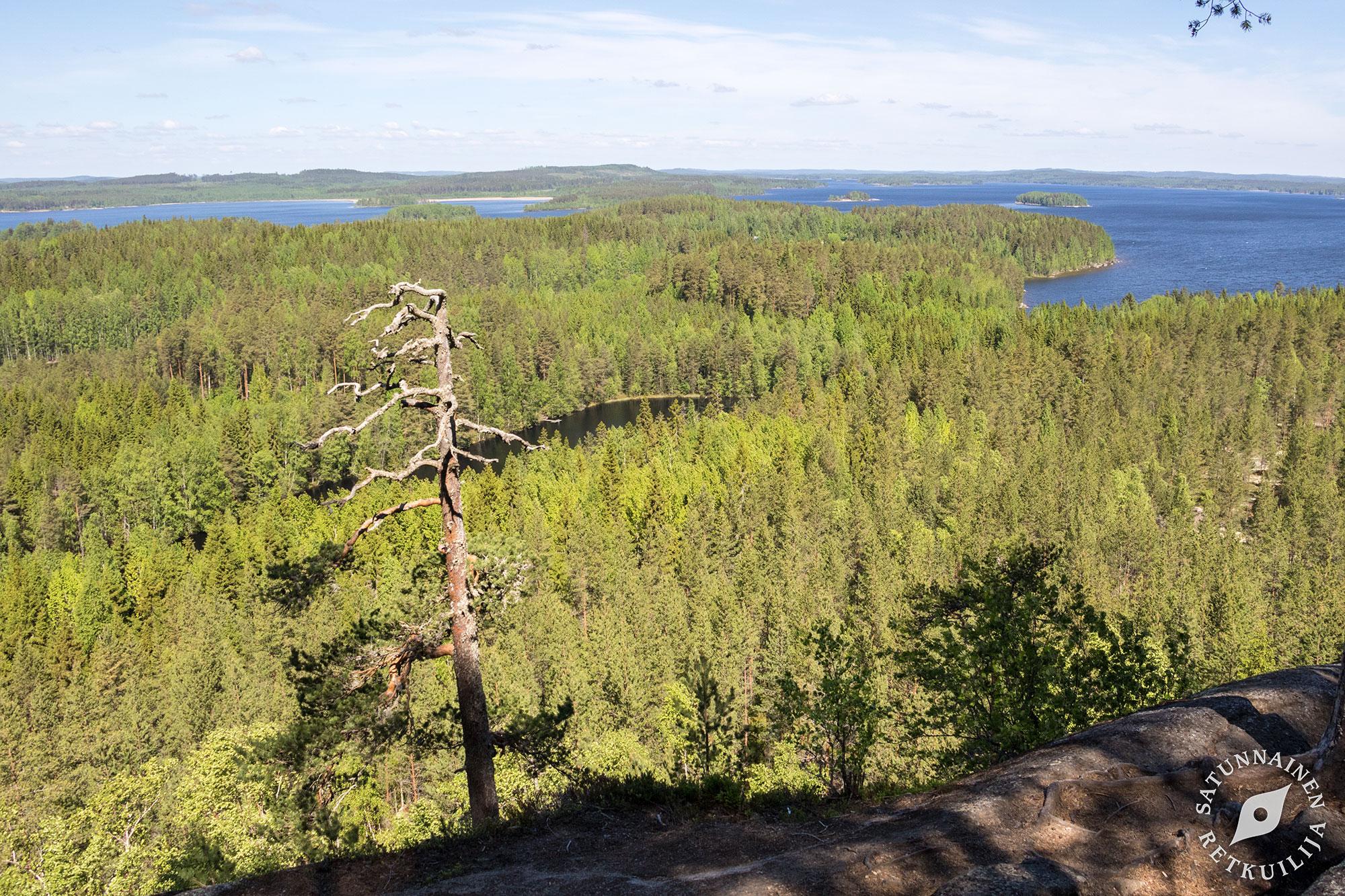 Hyyppaavuori Keski Suomen Koli Laukaa Satunnainen Retkuilija