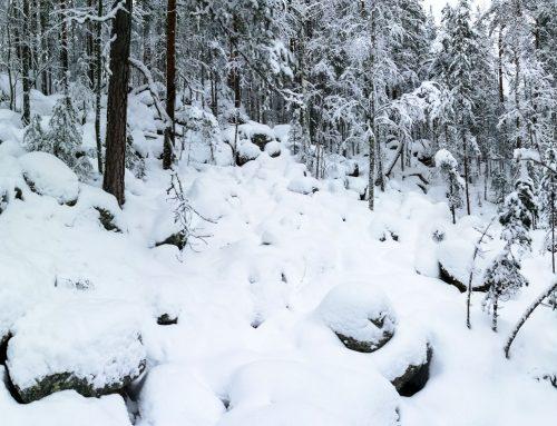 Kolihtalammen mäkien luolia ja päällyskivi, Jäppilä