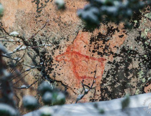 Yöveden Uittamonsalmen kalliomaalaukset, Mikkeli