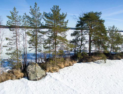 Mysteerikuvioinen Alttariluodon uhrikivi – Alttarikivi, Heinävesi