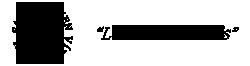 Satunnainen Retkuilija Logo